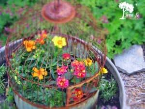 Vintage birdcage in a garden pot