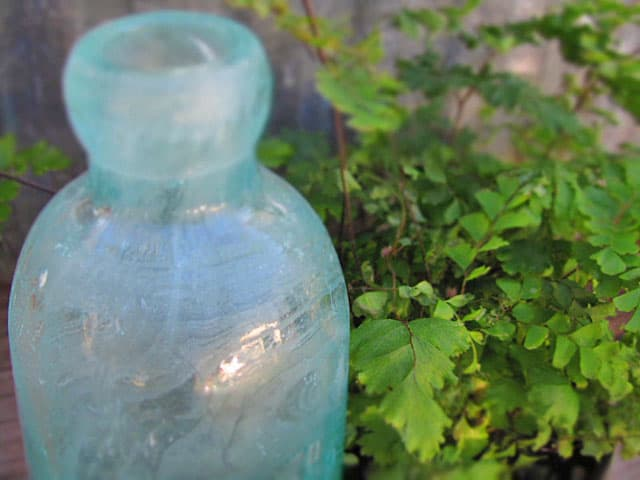 antiquebottles6