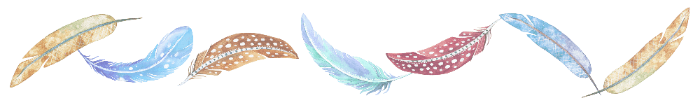 Feathers Border