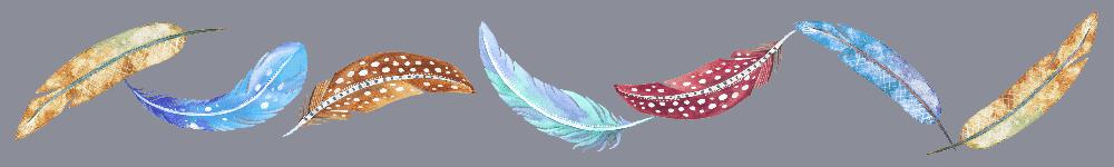 Feathers Border