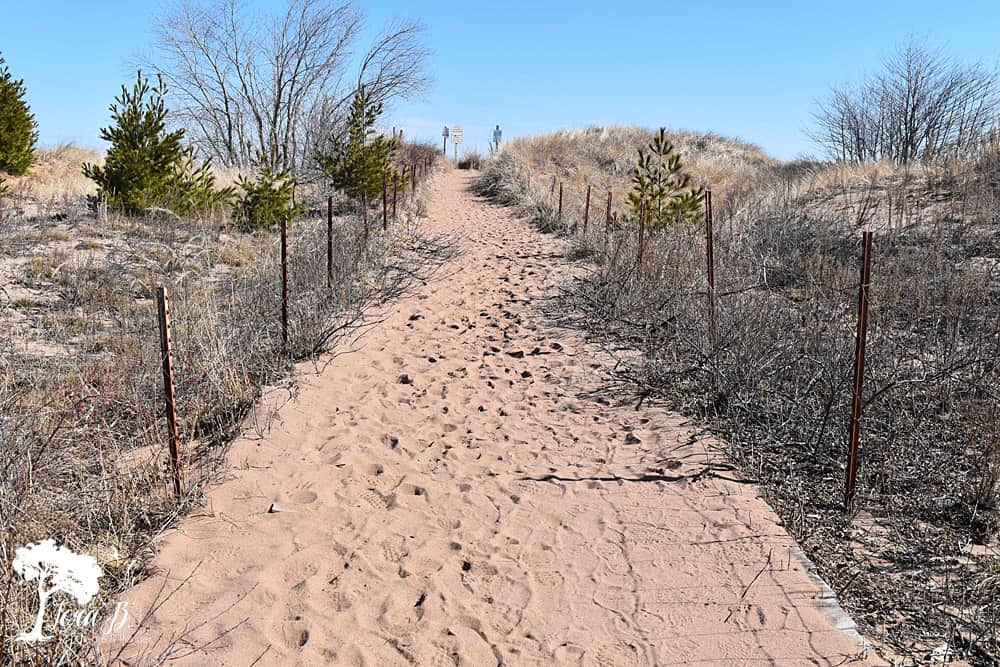 sandy walkway near Lake Superior
