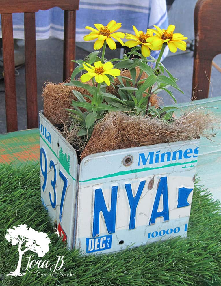 License plate box with garden flowers.