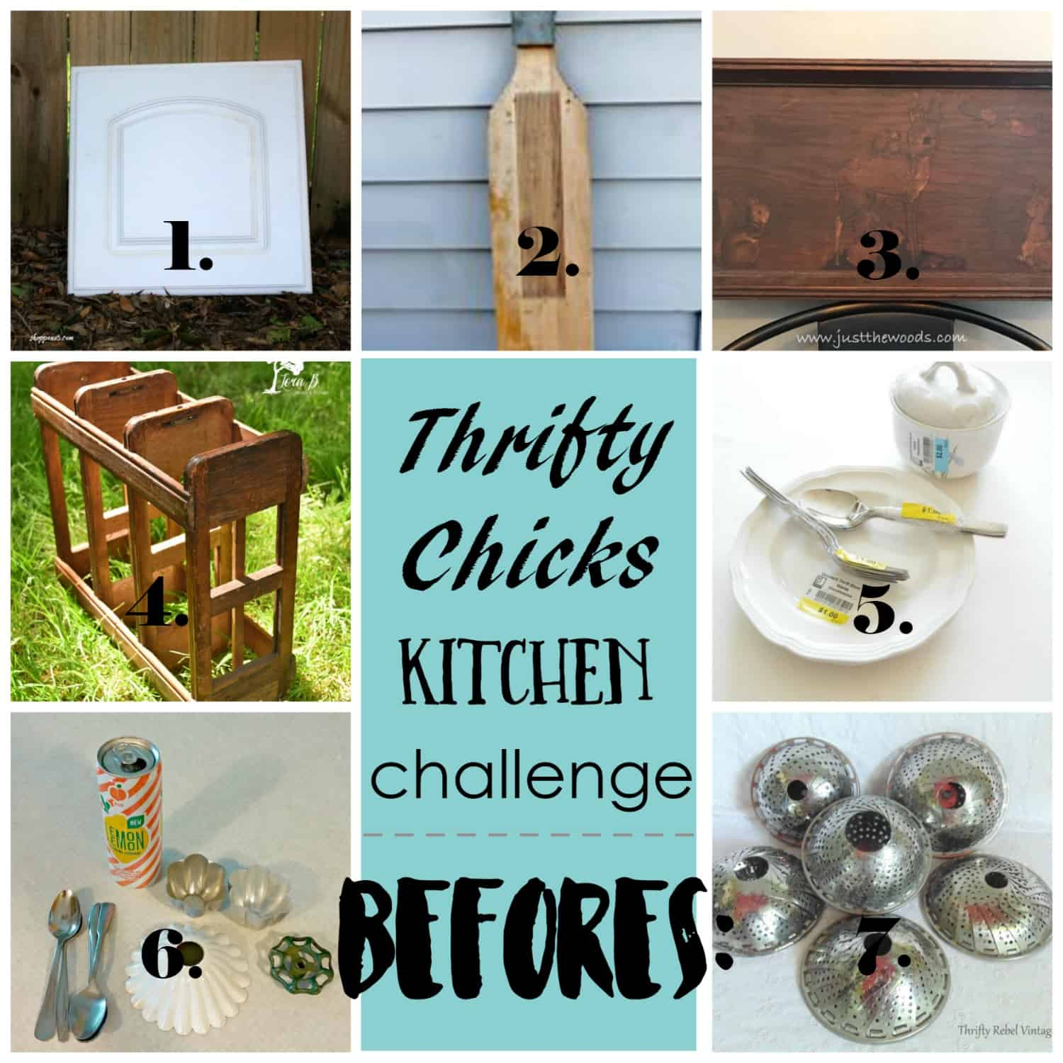 Thrifty Chicks collage
