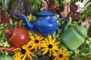 Vintage enamelware teapots