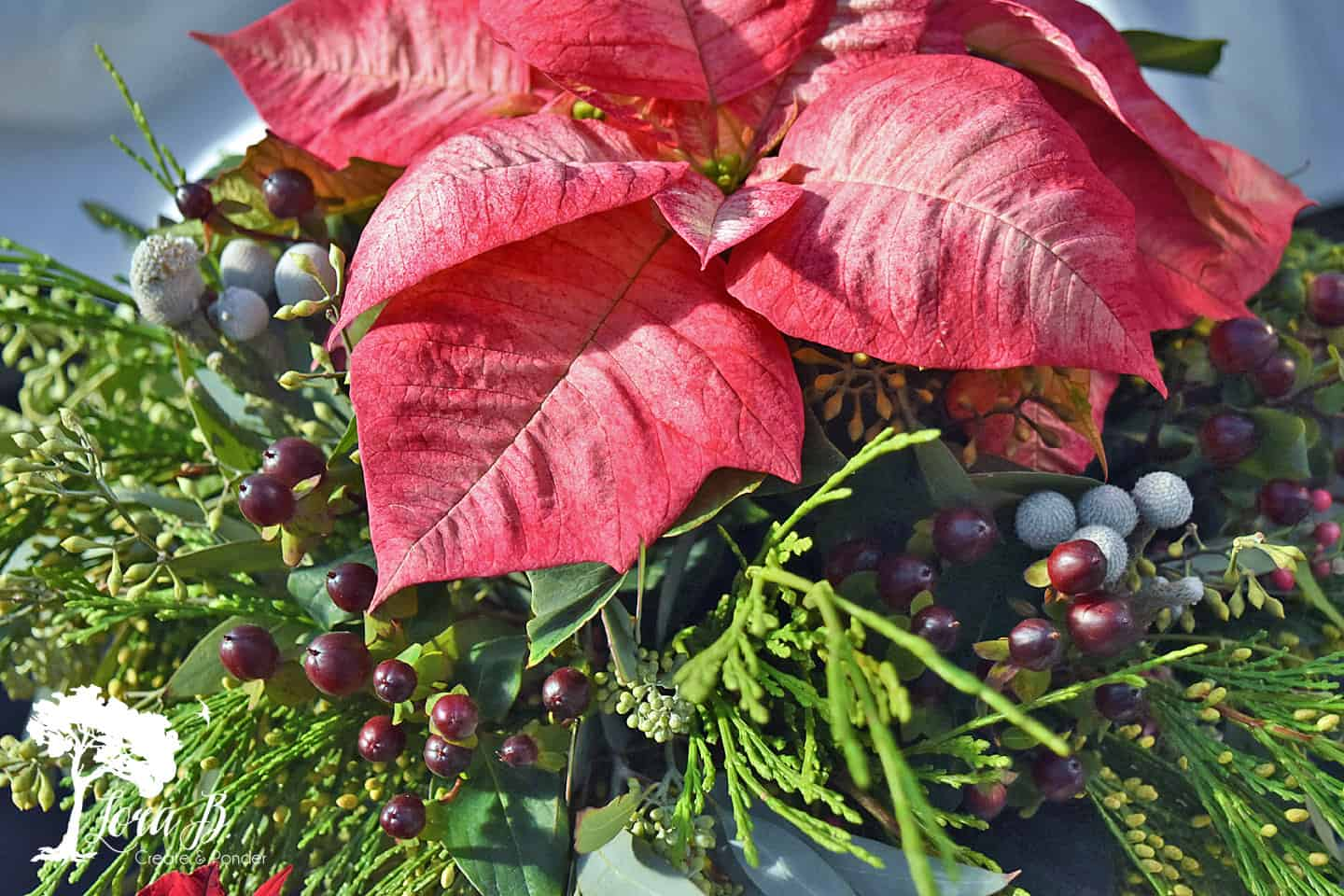 Poinsettias combine well with various winter berries.