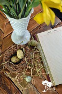Spring Nest Vignette