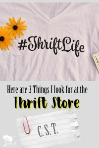3 Things to Look for at the Thrift Store