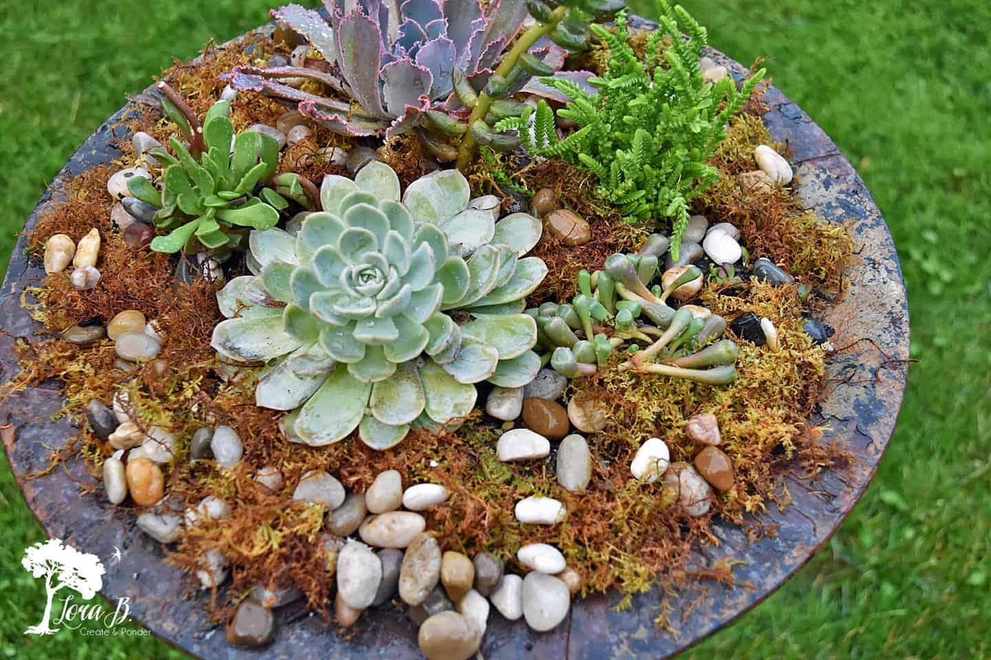 Re-purposed Birdbath