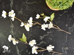 Faux spring Branch