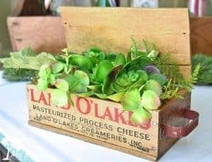 vintage cheesebox