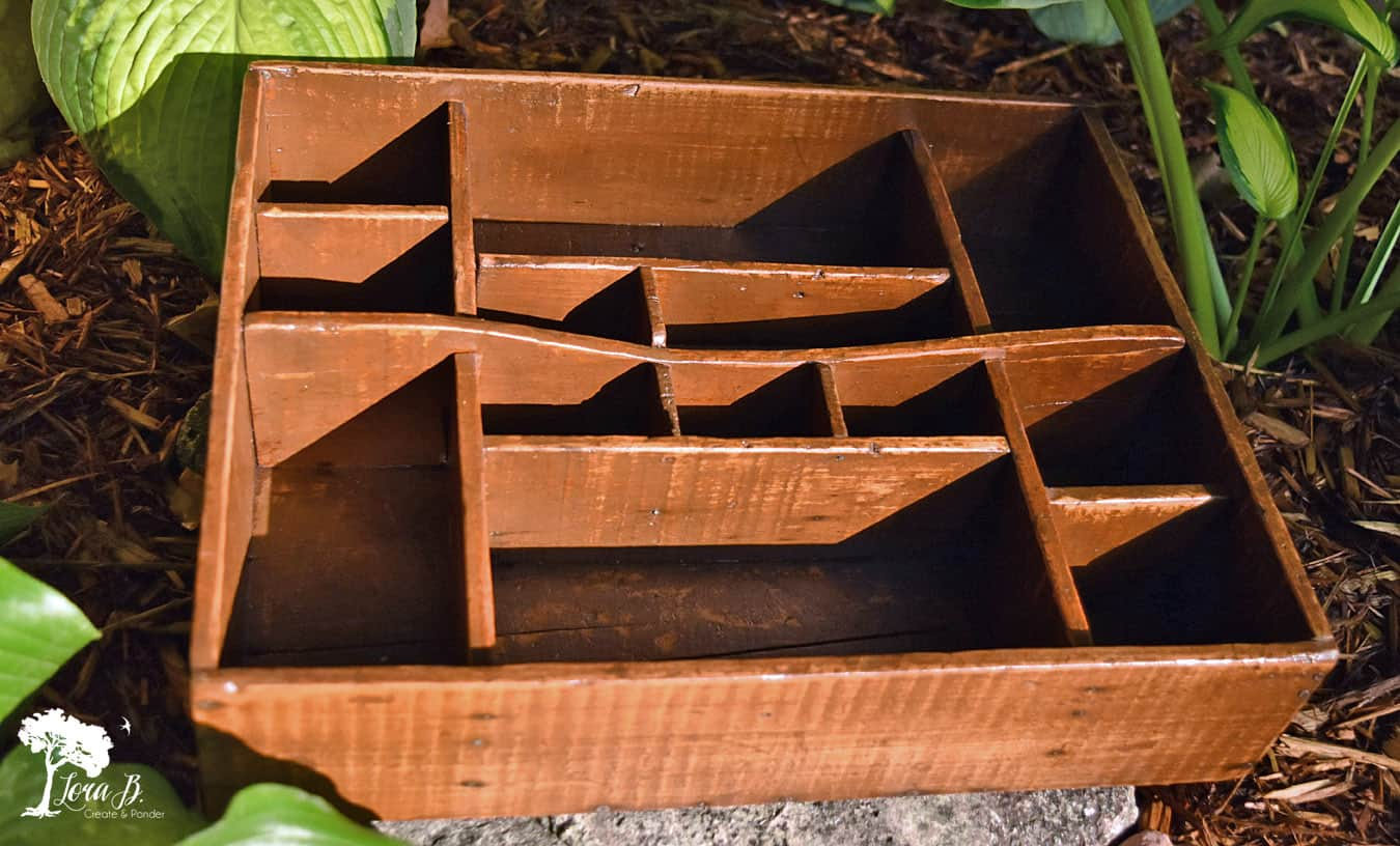 Divided Seed Tray