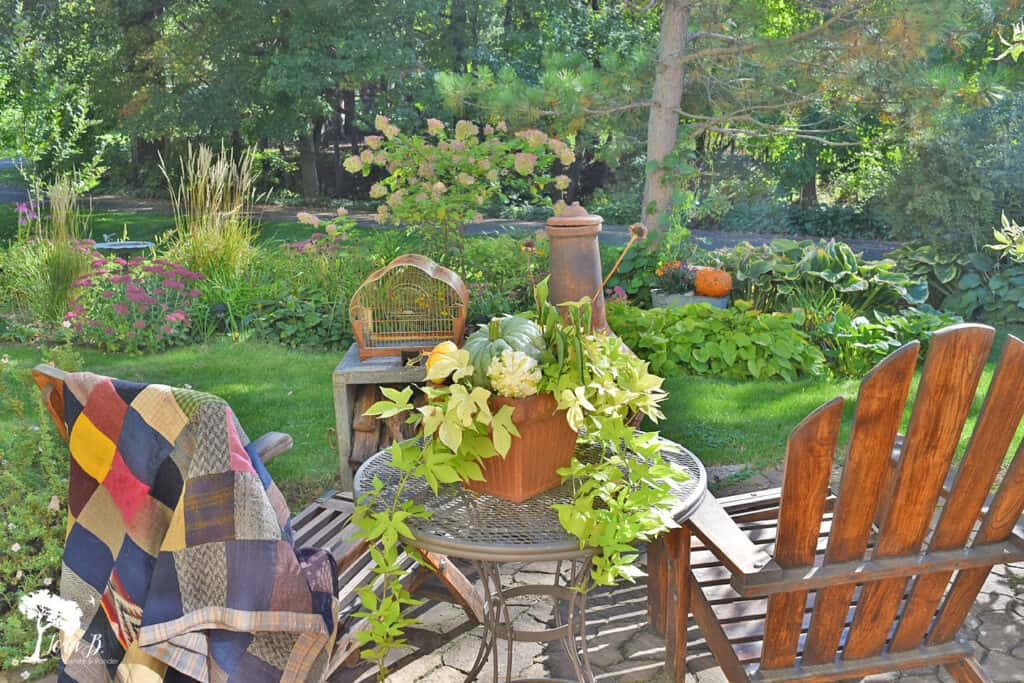 Teak adirondack chairs face a Fall garden.