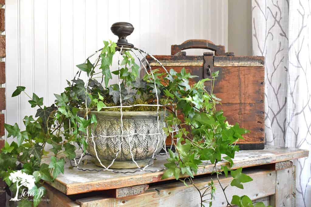 Repurpose old salvaged fencing to make this upcycled vintage cloche.