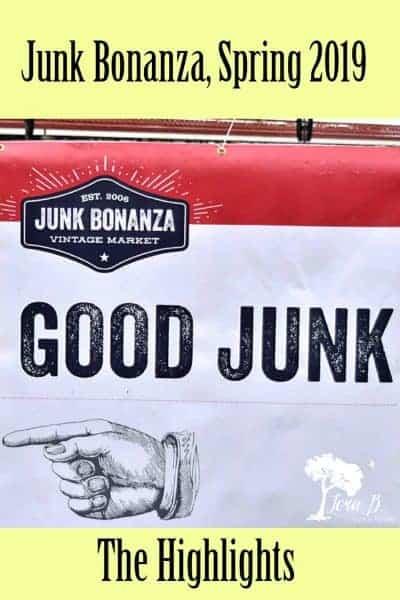 Junk Bonanza, 2019