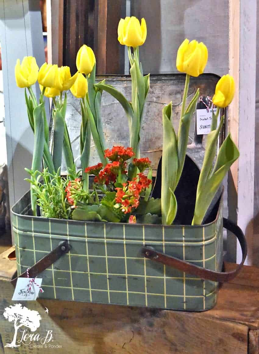 tulips in vintage picnic basket