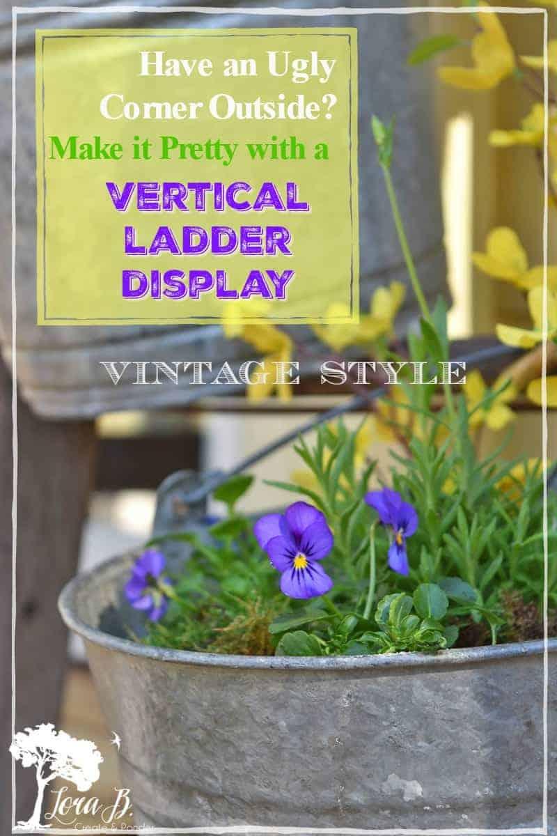 vertical garden ladder display