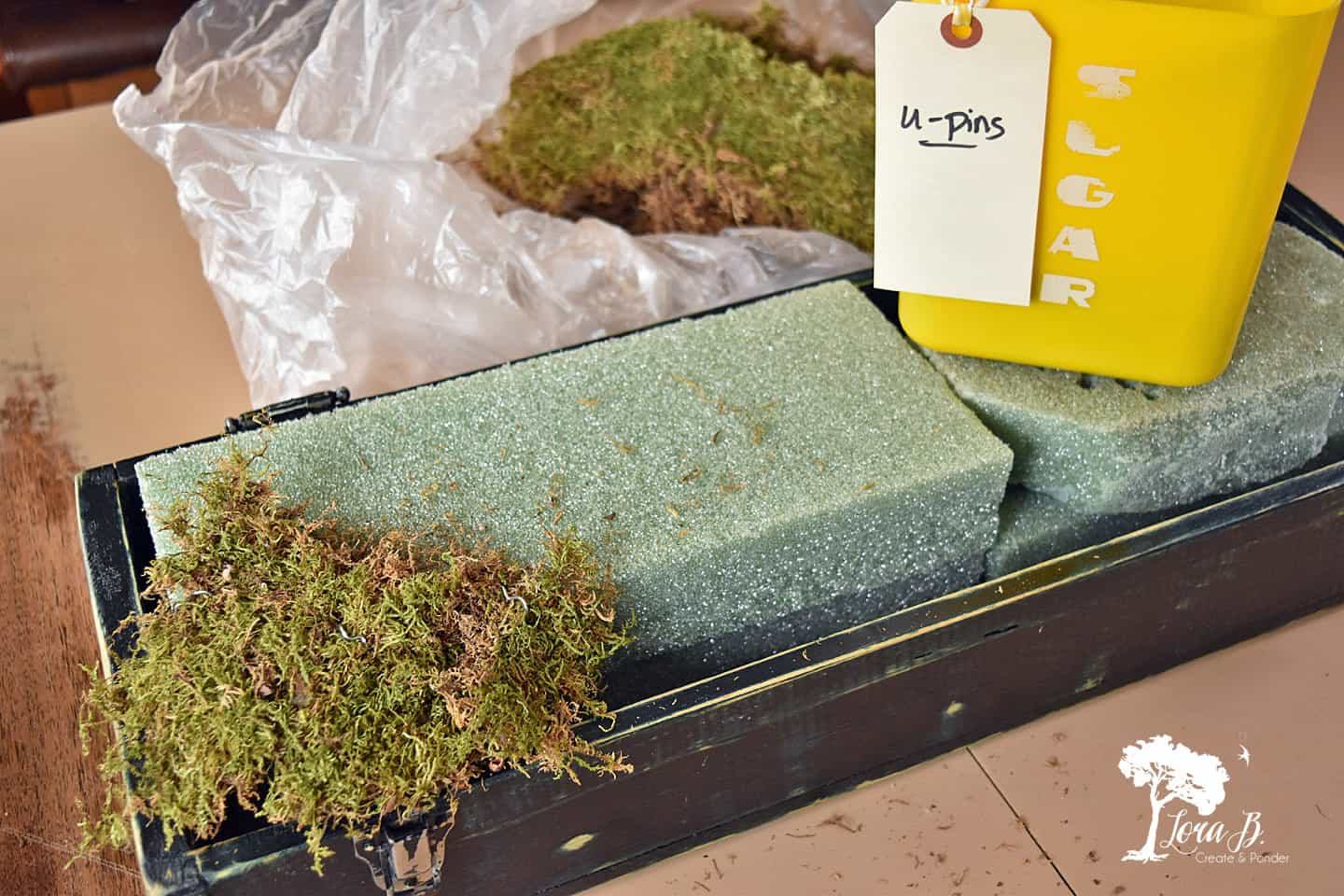 Moss for a floral arrangement