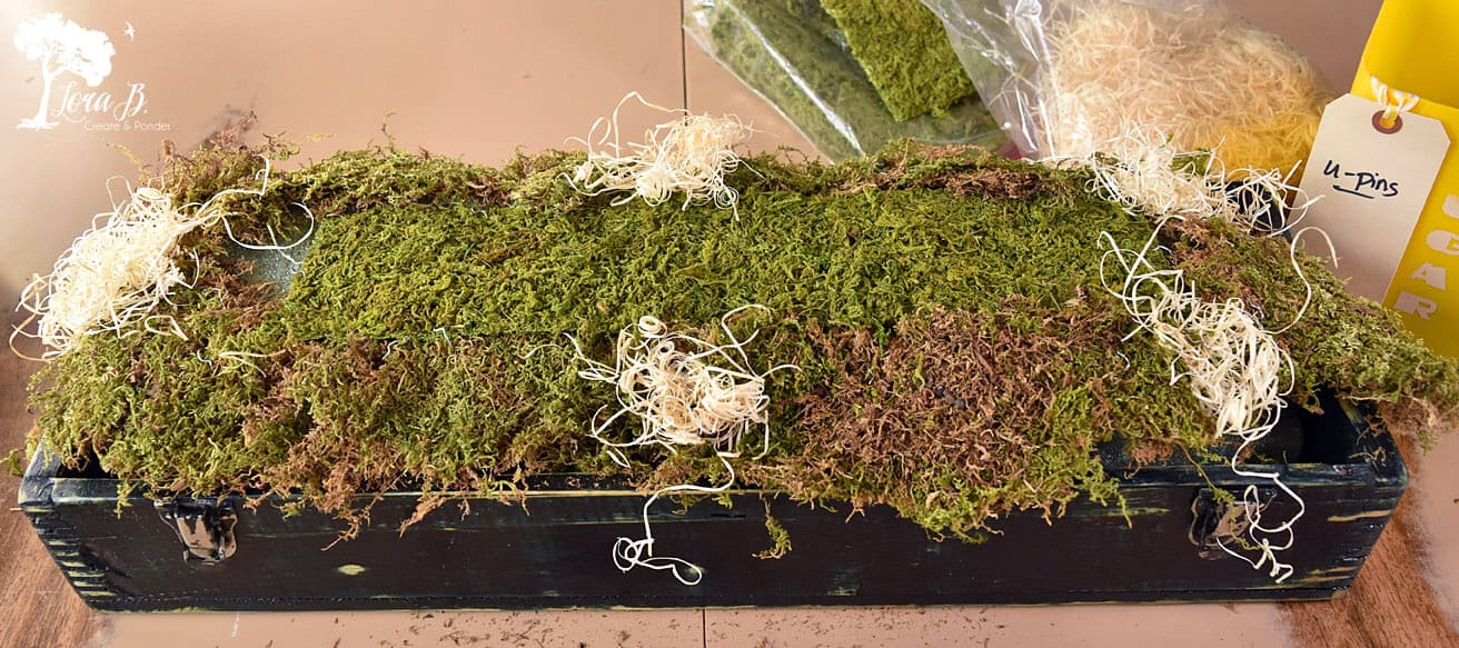 Moss in a floral arrangement
