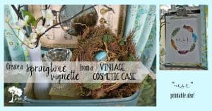 Nest Vignette in Vintage Cosmetic Case