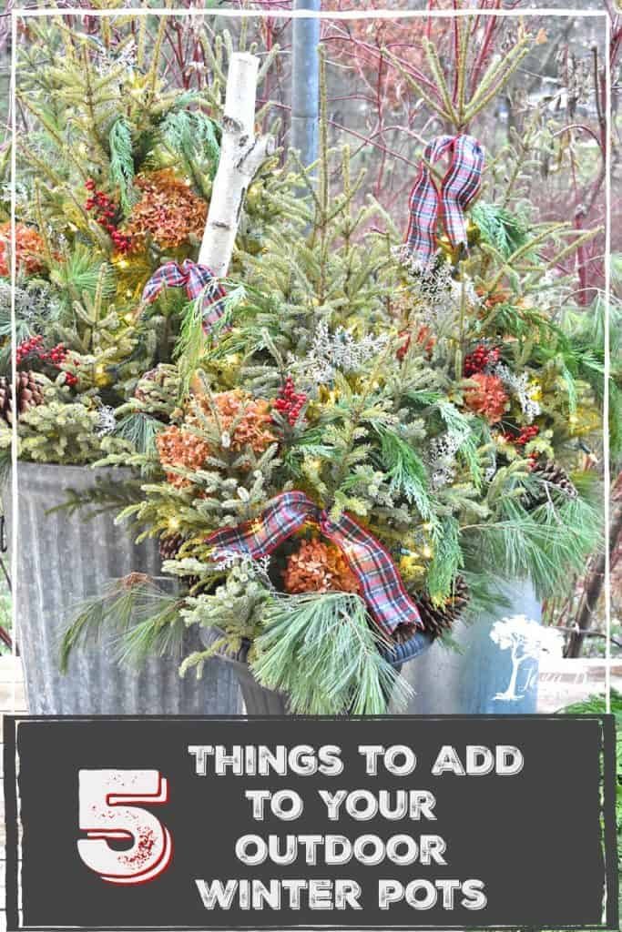 how to decorate outdoor winter containers