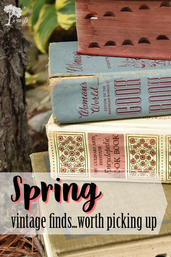 These vintage finds are classic and should be scooped up if you find them for the right price! Here are the items I couldn't hold back on this spring. #vintage #junking #vintagefinds #classicvintage #repurposed #refreshed #churchsales #estatesales