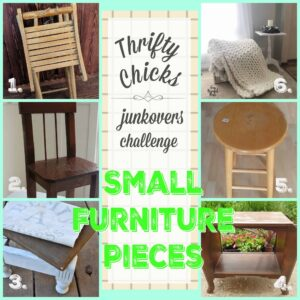 Thrifty Chicks junkover challenges